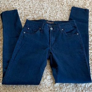 James Jeans Twiggy Skinny Jeans Lagoon Size 28